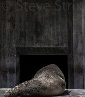 Steve Strix
